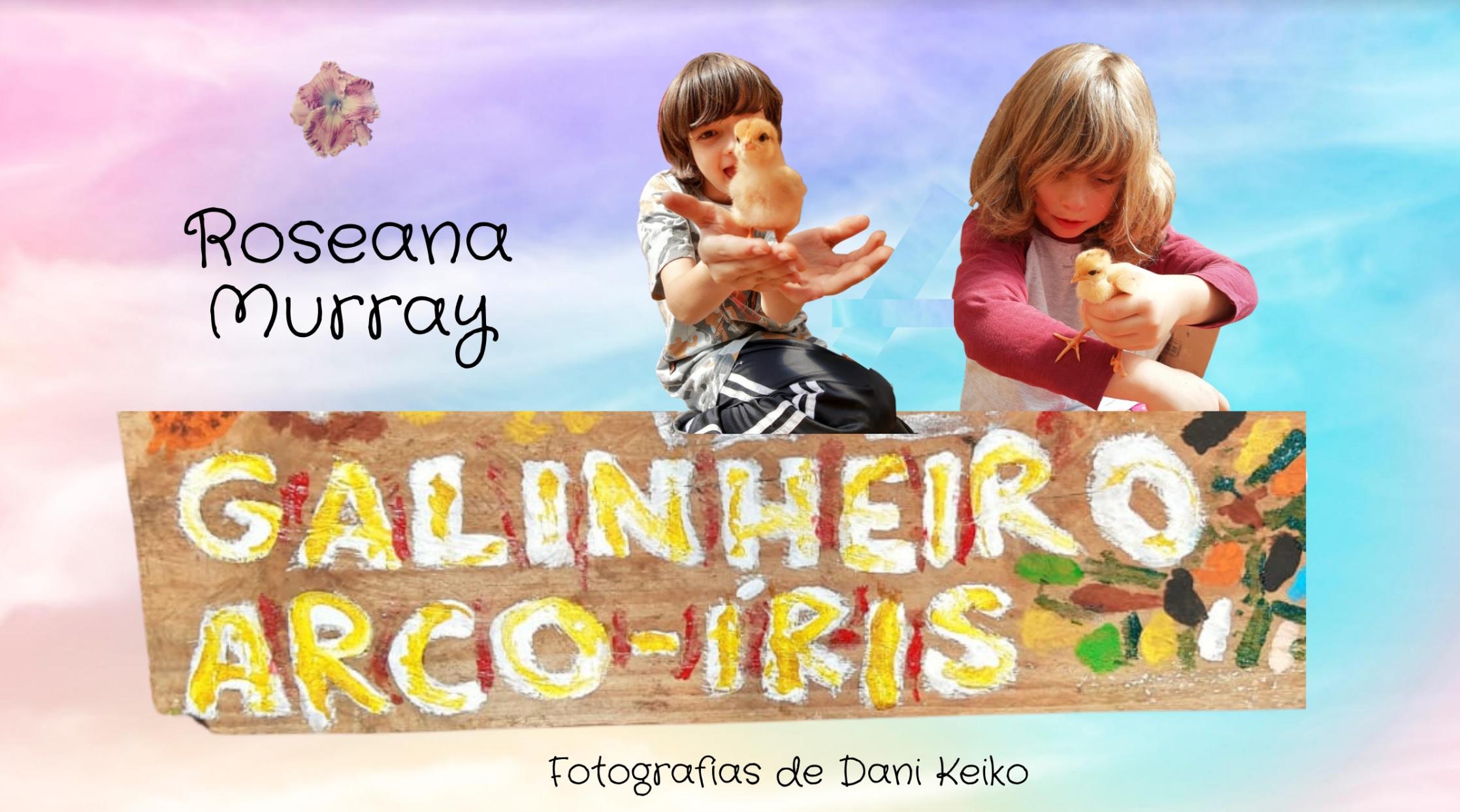 galinheiro-arco-iris-roseana-murray
